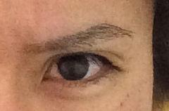 【画像】真面目な話、俺より眉と目が近い奴いんの?