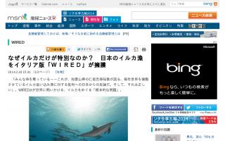 なぜイルカだけが特別なのか? 日本のイルカ漁をイタリア版「WIRED」が擁護