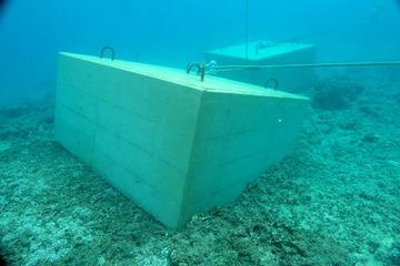 朝日新聞「辺野古の海中に沈められたコンクリがサンゴ礁を傷つけていた」