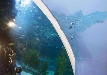 【韓国】第2ロッテワールドの水族館で漏水発覚 → 「よくあることで問題なし」と安全性をアピール