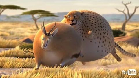 【動画あり】野生動物がボールのようにまんまるになってしまったらというアニメーションがかわいくて癒されるwwwwwwwww