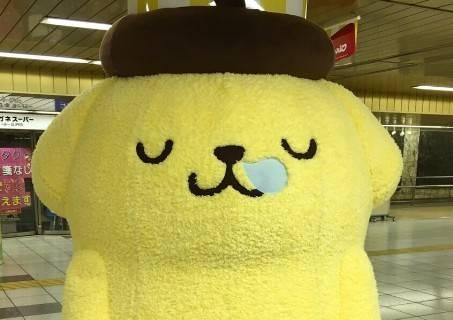 【可愛い】新宿駅に大量のポムポムプリンが出没! 串刺し状態なんだけどwwwwwwwwwwwww