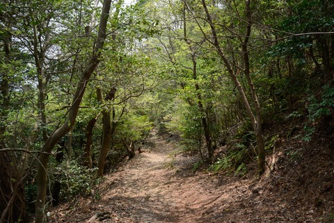 北海道男児置き去り事件の前に、金沢でも起こっていたことが判明!母 「いうこと聞かないから山道に連れて行って、置き去りした」