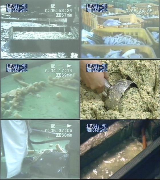 韓国、日本にゴミ捨て場の生ゴミを材料にした餃子を輸出していたことが判明
