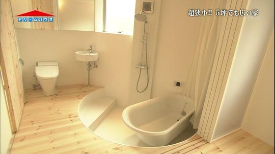 トイレ、風呂、ベッドが同室にあるドリームハウス、やはり売りに出される