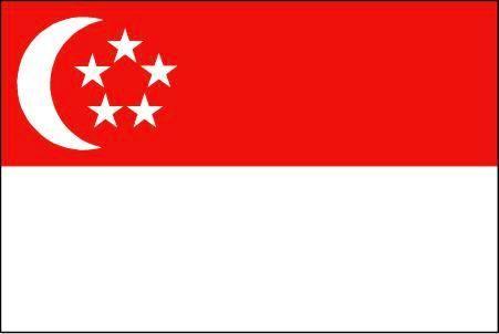 【シンガポール】世界中の女性が中国人男性と結婚したがっている?ネットユーザーからは「嘘つき!」「3千万人余ってるんだろ?」