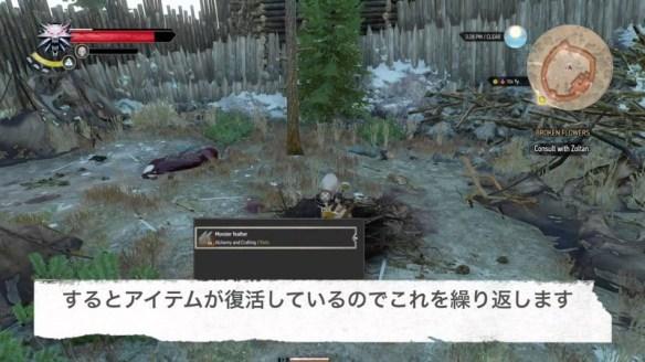 【ウィッチャー3】アイテム無限増殖 怪物の巣編