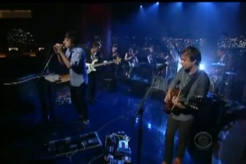 grizzly-bear-letterman