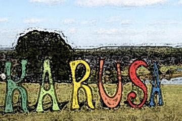 wakarusa-2012-banner