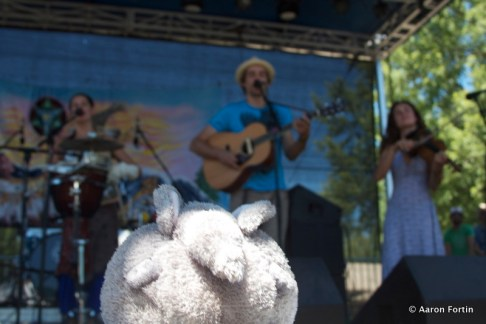 Furry Animal at Elephant Revival, Big Meadow, HSMF 2012