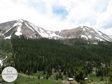 Independence Pass, Summer 2008