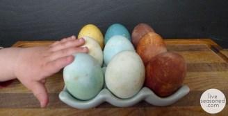 liveseasoned_spring2014_eggs1_wm