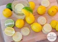 liveseasoned_spring2014_lemonvodkawater1