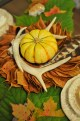 liveseasoned_fall14_leafgarland-14