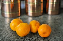 liveseasoned_winter14_bloodorangeshrub-1