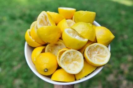 lemonade-5