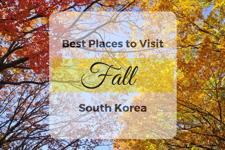 The Best Spots for Fall Colors in South Korea
