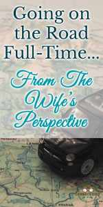 wifesperspectivepin