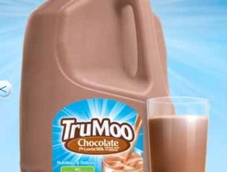 New $0.55/1 TruMoo Chocolate Milk printable coupon!!!