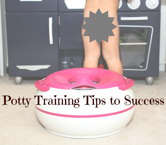 potty train to success