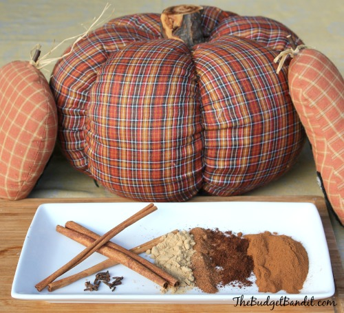 pumpkin pie spice 3