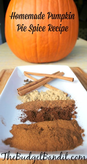 pumpkin pie spice pin