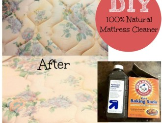 DIY 100% All Natural Mattress Stain Removing Spray