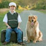 $5 travel rebate from pet-friendly website