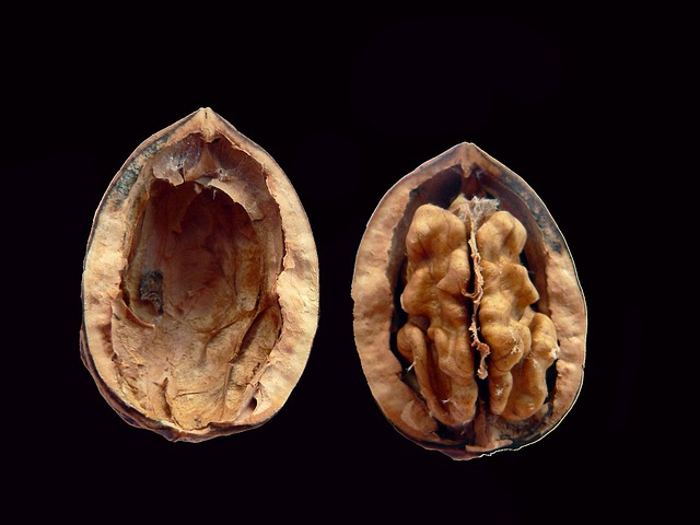 Walnuts Are Drugs, Says FDA