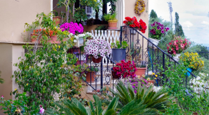 6 Low Cost Ways to Improve Your Home's Curb Appeal