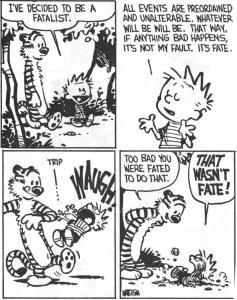 Calvin Free Will