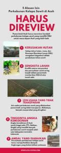 5 Alasan Izin Perkebunan Sawit di Aceh Harus Direview