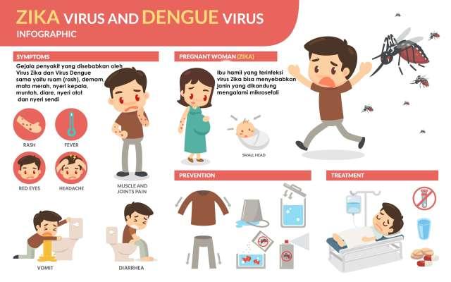 Gejala Virus Zika dan Virus Dengue