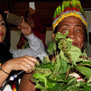 Mujer Indígena con ramas
