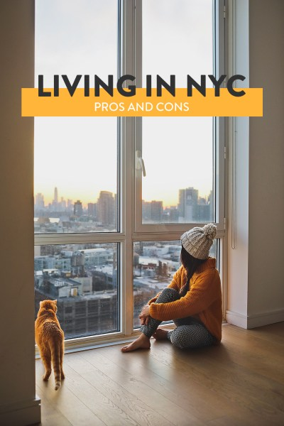 Pros and Cons of Living in New York » Local Adventurer » Travel Adventures in NYC + World Wide