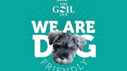 goil-dog2