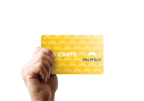 palm-bus_06