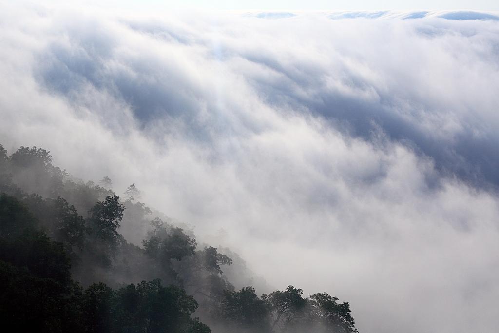 嗟嘆雲海流瀑之大美,乘纜車遊星野度假村之大景