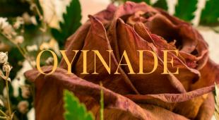 "Oyinade Episode 3: ""The Creature With Ten Eyes"""