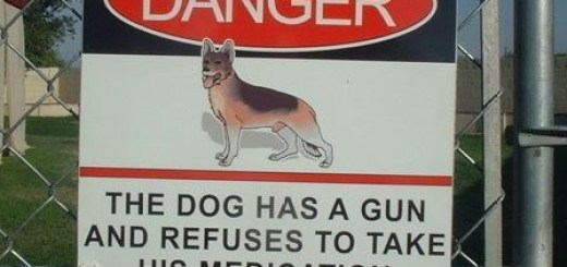 Beware Dog Has Gun