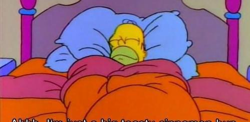 Homer in Bed