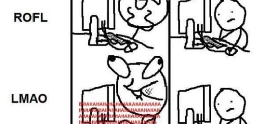 lol rofl lamo