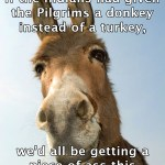 Donkey Thanksgiving