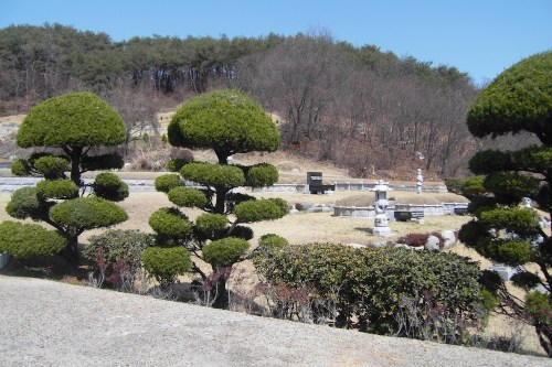 The well-kept Yu family graveyard