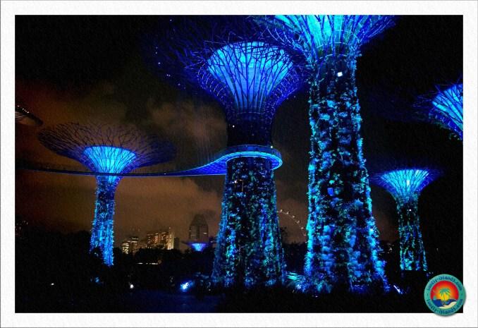 Leuchtende Supertrees