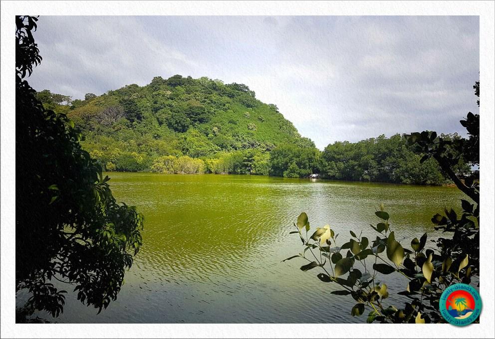Apo Island Lagune
