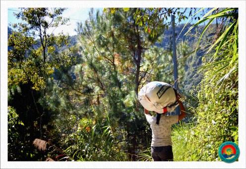 Reisbäuerin in Batad