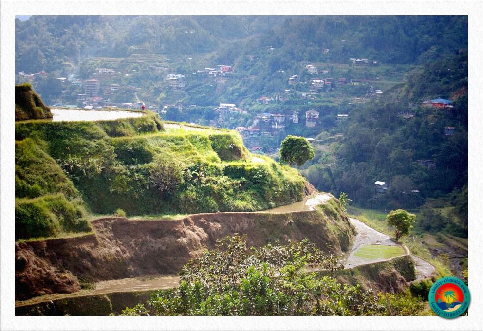 Trekking durch die Reisterrassen