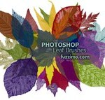 Now You See It, Now You Don't – Photoshop CS5′s New Content Aware Fill