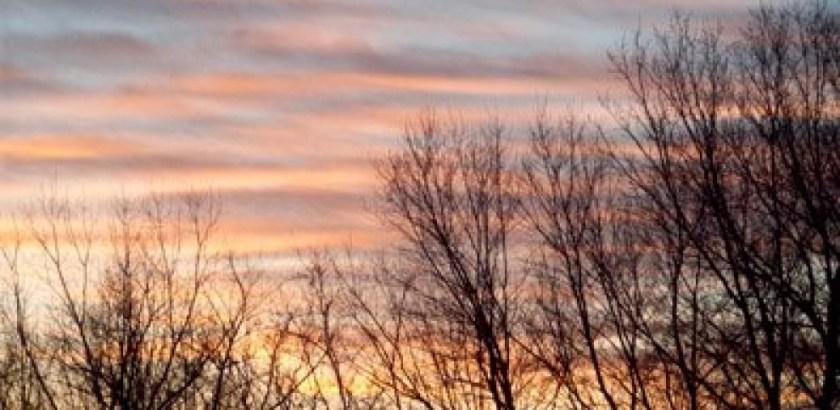 cropped-pink-sky.jpg